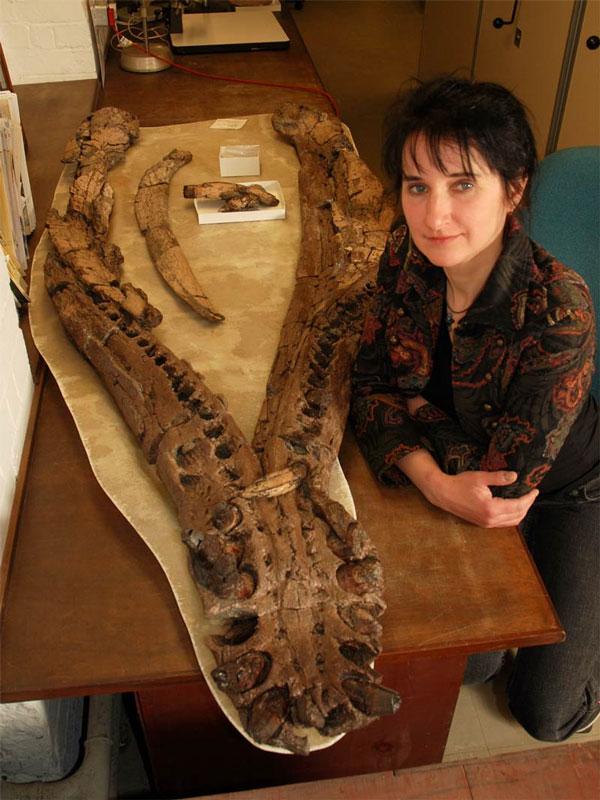 Judyth Sassoon bên phần hóa thạch phần hàm của một sinh vật cổ đại.