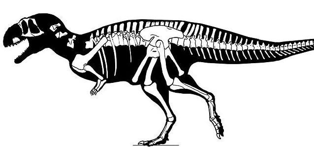 Khủng long Eoabelisaurus mefi ăn thịt rất giống với loài khủng long bạo chúa