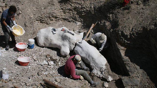Hiện trường nơi khai quật hóa thạch khủng long