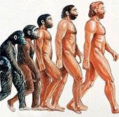 Tìm thấy hóa thạch loài khỉ cổ nhất châu Mỹ ở Panama