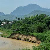 Nguy cơ mất diện tích rừng ở tiểu vùng sông Mekong