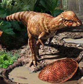 Phát hiện hóa thạch của khủng long nhỏ như loài chó