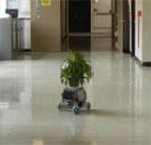 Robot chăm sóc cây cảnh