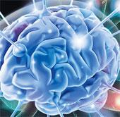 """Não """"vô tội"""" trong những quyết định sai lầm của con người"""