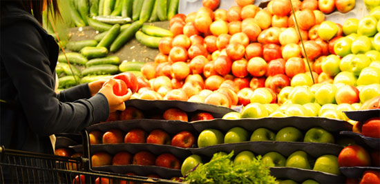 Thế giới lãng phí 1,3 tỉ tấn lương thực mỗi năm