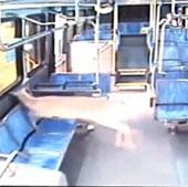 Video: Hươu đâm thủng kính xe buýt