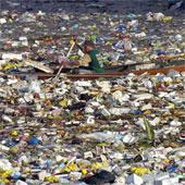 Bãi rác nổi lớn nhất thế giới đe dọa sinh vật biển