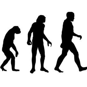 Tại sao mọi loài linh trưởng không tiến hóa thành người?