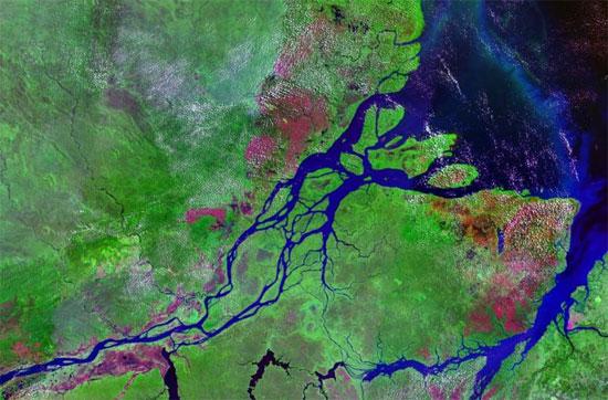 Sông Amazon thải ra hầu hết lượng carbon đã hấp thụ bởi rừng Amazon