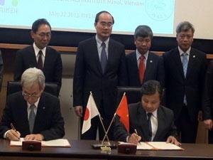 Việt-Nhật cùng nghiên cứu giống sắn biến đổi gene