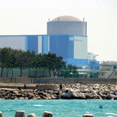 Điện hạt nhân Hàn Quốc dính hàng nhái