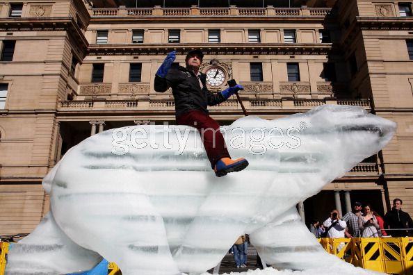 Gấu Bắc cực băng trưng bày tại Sydney
