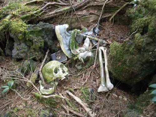Bộ xương trong ảnh được chụp từ khu rừng Aokigahara