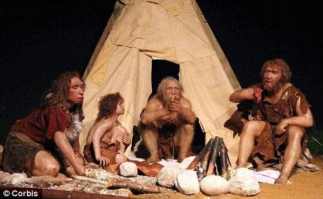 Người thượng cổ biến đổi gen lúa nước từ 10.000 năm trước