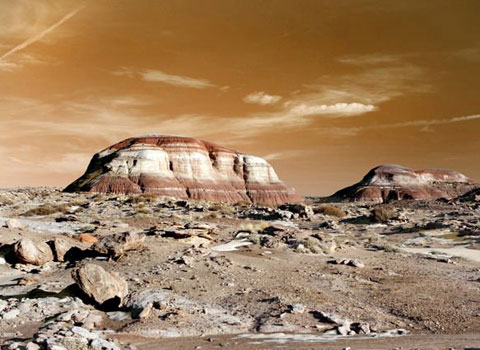 Hình ảnh của chương trình mô phỏng cuộc sống trên sao Hỏa