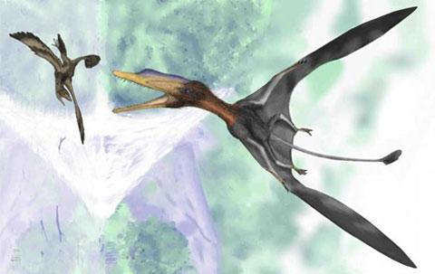 Một con khủng long đang săn con Anchiornis, đối thủ nặng kí cho danh hiệu khủng long nhỏ nhất thế giới của Ashdown họ maniraptoran