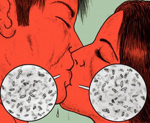 Cũng cần lưu ý là trong một ml nước bọt chứa khoảng 100 triệu vi khuẩn