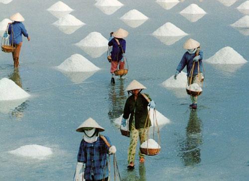 Ứng dụng sản xuất muối sạch ở đồng muối phơi cát