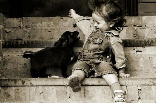 Chó nhận biết được nụ cười
