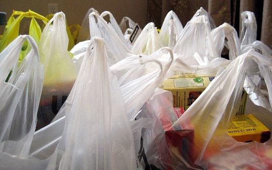 Thêm một thành phố Mỹ cấm dùng túi nilon