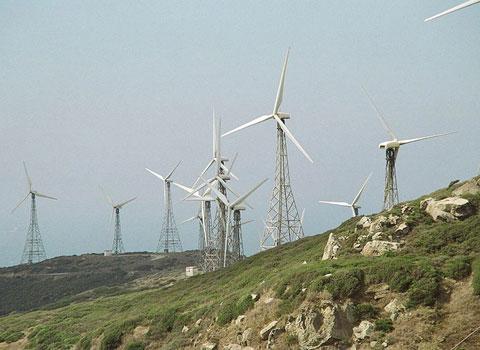 Việt Nam công bố 7 kỷ lục môi trường