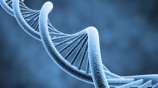 Giải mã ADN giá rẻ