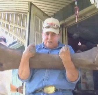 Mỹ: Một nông dân tìm thấy bộ xương voi ma mút ngay trong sân nhà