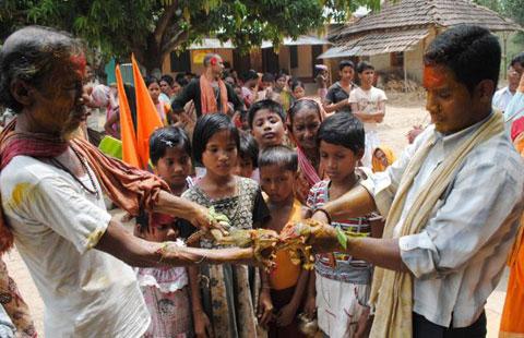 Hầu hết dân làng, nhất là trẻ em thường háo hức tụ tập lại để để xem đám cưới ếch.