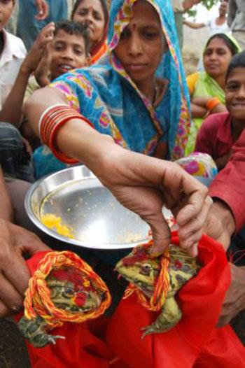 Người phụ nữ Ấn Độ đang mặc trang phục truyền thống của đất nước này cho cặp đội ếch trong lễ cưới, đó là chiếc áo choàng không tay màu đỏ và quấn khăn ở cổ.