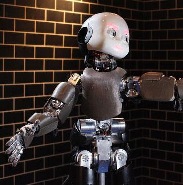 Robot có thể học ngôn ngữ từ người