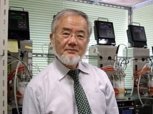 Giải Kyoto Prize trị giá 1,8 triệu USD được chia ba