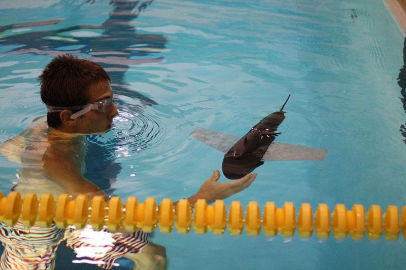 Dùng cá robot tuần tra môi trường biển