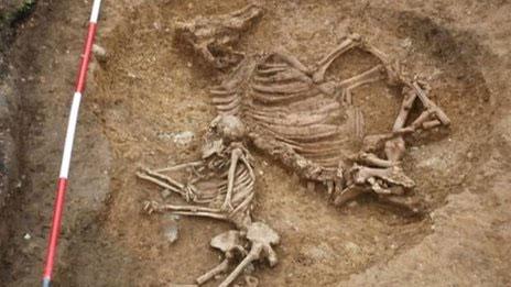 """Ngôi mộ cổ """"kỳ lạ"""" mà các nhà khảo cổ Anh vừa mới phát hiện."""