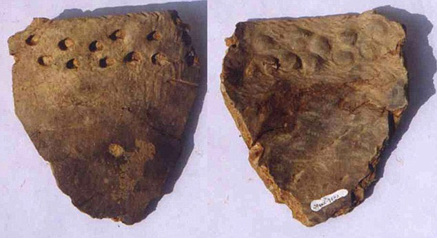Một mảnh gốm trong hang Xianrendong ở Giang Tây, Trung Quốc.