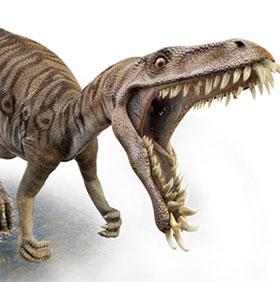 Phát hiện cá thể khủng long sâu răng đầu tiên