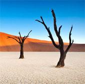 """Nghĩa địa """"ngoài hành tinh"""" giữa lòng sa mạc châu Phi"""