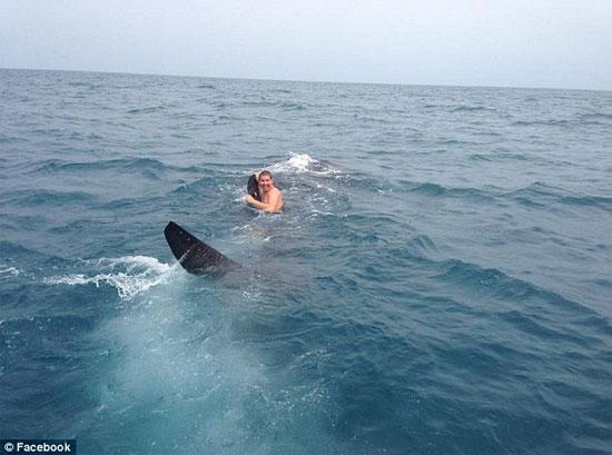 Liều mạng biến cá mập thành... du thuyền