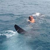 Liều mạng biến cá mập thành du thuyền