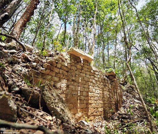 Tìm thấy thành phố Maya cổ trong rừng Mexico