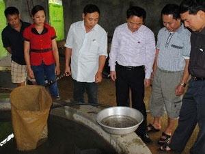 Trang trại tư nhân sản xuất thành công cá nheo giống