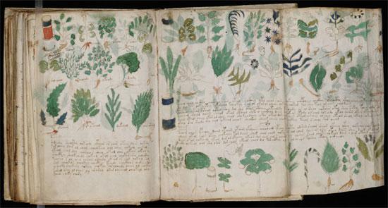 Sách Voynich