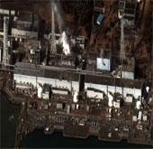 Nhầm lẫn trong điều tra nhiễm xạ sự cố Fukushima