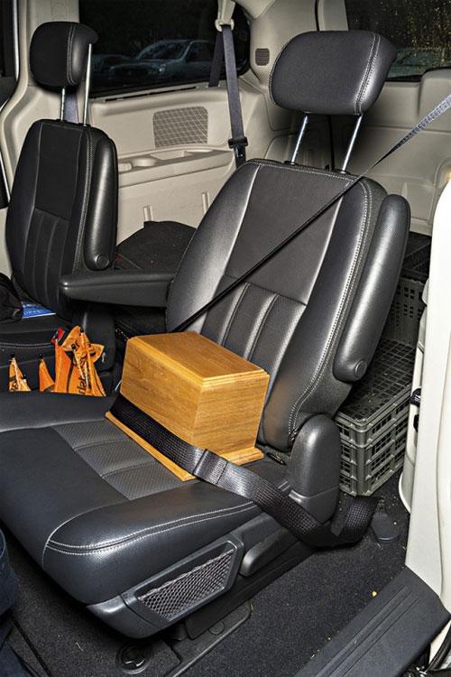 Tro được chở đi như một người trên ô tô.