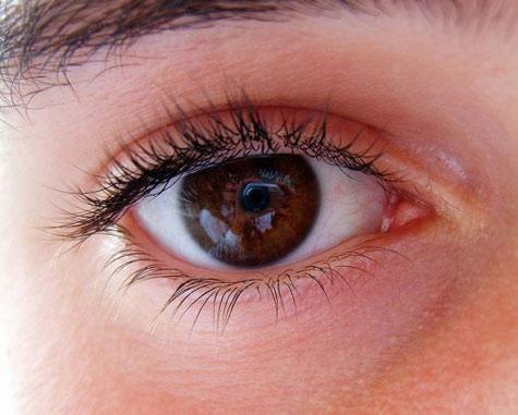 Cấy ghép tế bào gốc để chữa mù