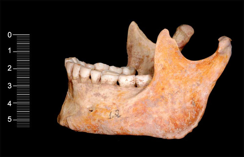 Một trong hai bộ xương người hang được khai quật tại Tây Ban Nha
