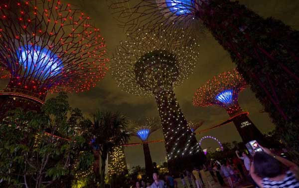"""Tuy nhiên, điều làm cho du khách bất ngờ là nguồn điện phục vụ cho việc thắp sáng công viên hoàn toàn là năng lượng mặt trời, được những """"siêu cây"""" tổng hợp vào ban ngày."""