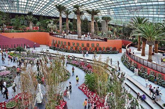 Khu vườn còn có một khu vực đặc biệt, quy tụ những loài thực vật quý hiếm trên toàn thế giới phục vụ du khách tham quan và nâng cao nhận thức của con người trong việc bảo vệ môi trường tự nhiên.