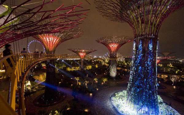 Những cây cầu nằm trên cao cho phép du khách đi dạo và ngắm toàn cảnh khu vườn.