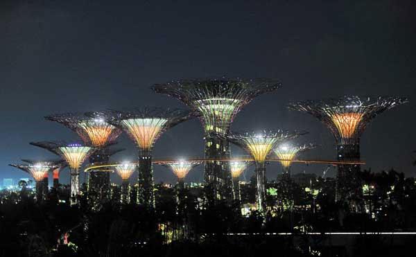 Du khách sẽ không thấy quá nhiều ánh sáng thừa ở khu vườn siêu cây năng lượng mặt trời. Đèn được sử dụng để thắp sáng cũng là loại tiết kiện điện để hiệu quả của vườn sinh thái đạt cao nhất.