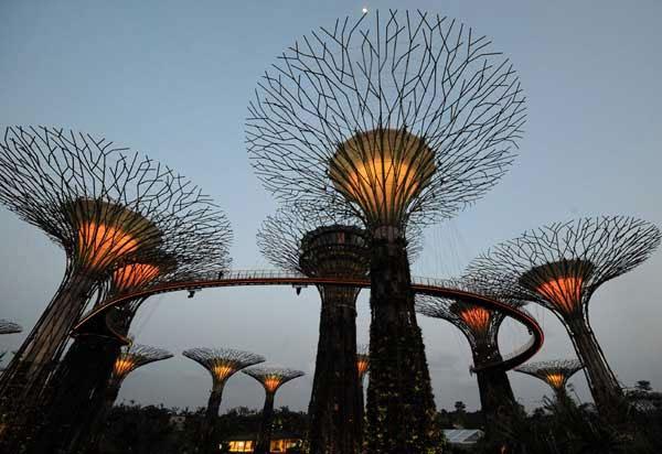Chính vì lẽ đó, công viên luôn mang vẻ kì ảo và cuốn hút du khách tham quan.